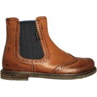 Chaussures Garçon Boots Stones and Bones Evan Cognac
