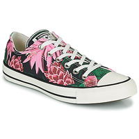 Chaussures Femme Baskets basses Converse CHUCK TAYLOR ALL STAR JUNGLE SCENE OX Rose / Vert