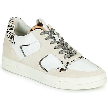 Chaussures Femme Baskets basses Mam'Zelle ARTIX Blanc / Léopard
