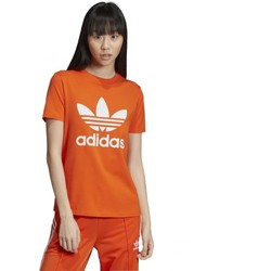 Vêtements Femme T-shirts manches courtes adidas Originals Trefoil Tee Orange