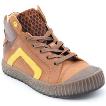 Chaussures Garçon Baskets montantes Bellamy frin Marron
