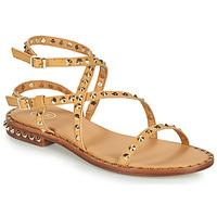 Chaussures Femme Sandales et Nu-pieds Ash PETRA Marron