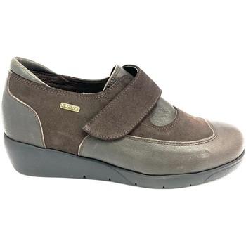 Chaussures Plaju PIEL-SERRAJE MARRON