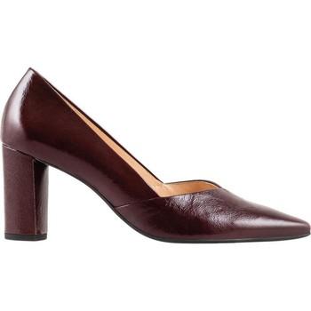 Chaussures Femme Escarpins Högl Entreprise Bordo Rouge