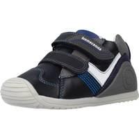 Chaussures Garçon Bottes Biomecanics 201124 Bleu