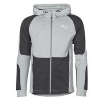 Vêtements Homme Sweats Puma EVOSTRIPE FZ HOODY Gris / Noir