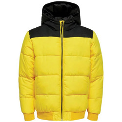Vêtements Homme Doudounes Only & Sons  22015392 Jaune
