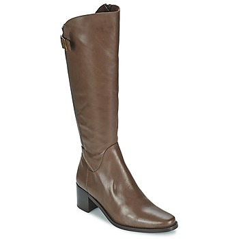 Chaussures Femme Bottes ville Betty London SALINA Marron
