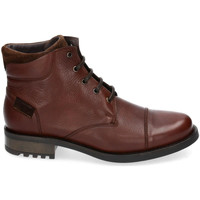 Chaussures Homme Boots Kennebec 8155 Marron
