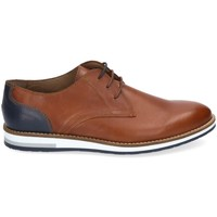 Chaussures Homme Derbies & Richelieu Kennebec 8138 Marron