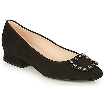Chaussures Femme Ballerines / babies Peter Kaiser ZWONIZ Noir