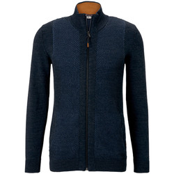 Vêtements Homme Gilets / Cardigans Tom Tailor - pull BLEU MARINE