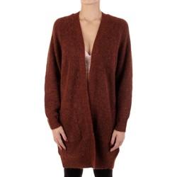 Vêtements Femme Gilets / Cardigans Selected 16074480 Brique