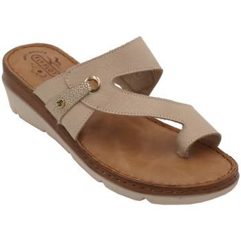 Chaussures Femme Sandales et Nu-pieds Fly Flot AFLYFLOT71FBG beige