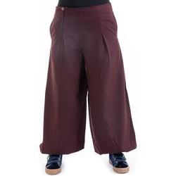 Vêtements Femme Pantalons fluides / Sarouels Fantazia Pantalon ethnique large bouffant droit femme Damh Marron