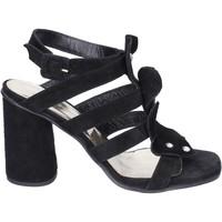 Chaussures Femme Sandales et Nu-pieds Sergio Cimadamore Sandales Daim Noir