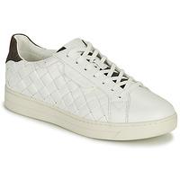 Chaussures Femme Baskets basses MICHAEL Michael Kors KEATING LACE UP Blanc / Marron