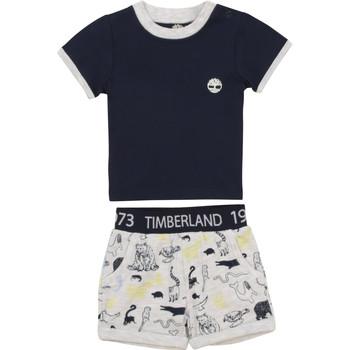 Vêtements Garçon Ensembles enfant Timberland PITTI Multicolore