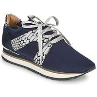 Chaussures Femme Baskets basses Adige XAN V4 KOI SILVER Bleu