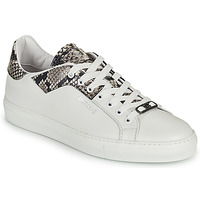 Chaussures Homme Baskets basses Roberto Cavalli KALE Blanc