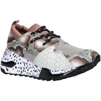 Chaussures Femme Multisport Steve Madden CLIFF SM11000185 Marr?n