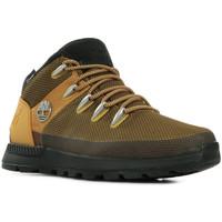 Chaussures Homme Randonnée Timberland Sprint Trekker WP Mid Boot marron