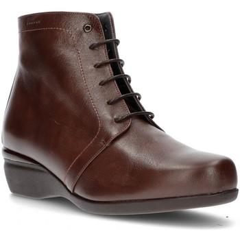 Chaussures Femme Bottines Dtorres BOTTES  OTTAWA DENTELLE LE TABAC