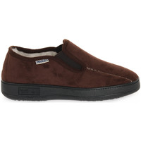 Chaussures Homme Chaussons Emanuela 1702 MAPRO Marrone
