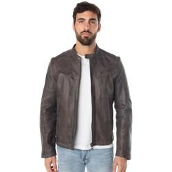 Vêtements Homme Blousons Daytona GAFINO SHEEP TWIX GREY Gris