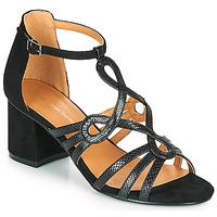 Chaussures Femme Sandales et Nu-pieds The Divine Factory QL4327 Noir