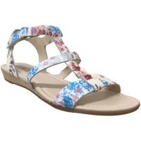 Chaussures Femme Sandales et Nu-pieds Pikolinos 816-PR0751 Bleu/Rose