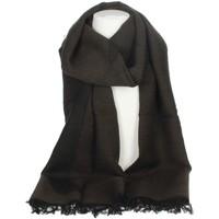 Accessoires textile Femme Echarpes / Etoles / Foulards Alviero Martini K S117 AM65 Marron