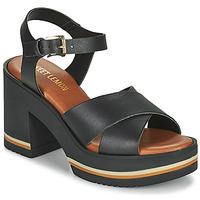 Chaussures Femme Sandales et Nu-pieds Sweet Lemon LUPOLE Noir