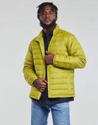 Vêtements Homme Doudounes Levi's OASIS Vert