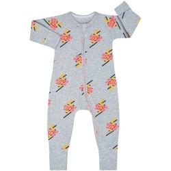 Vêtements Enfant Combinaisons / Salopettes DIM Barboteuse à manches longues avec fermeture éclair Gris