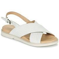 Chaussures Femme Sandales et Nu-pieds Mjus KETTA Blanc