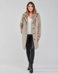 Vêtements Femme Manteaux Oakwood CYBER GRIS