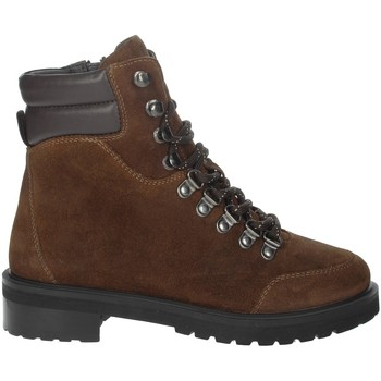 Chaussures Femme Boots Riposella IC-80 Marron cuir