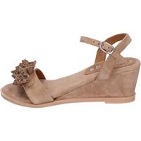 Chaussures Femme Sandales et Nu-pieds Adriana Del Nista BK996 Marron
