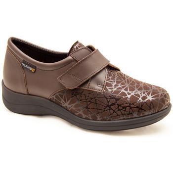 Chaussures Femme Derbies & Richelieu Calzamedi CHAUSSETTES ÉLASTIQUES DIABÉTIQUES CONFORTABLES VELCR BROWN