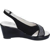 Chaussures Femme Sandales et Nu-pieds Adriana Del Nista BJ04 Noir