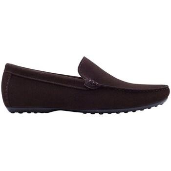 Chaussures Homme Mocassins Finsbury Shoes DANDY Marron
