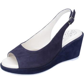 Chaussures Femme Sandales et Nu-pieds Adriana Del Nista BJ06 Bleu