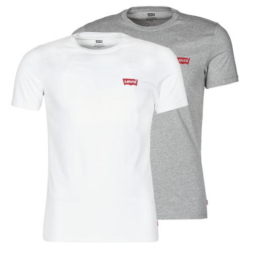 Vêtements Homme T-shirts manches courtes Levi's 2PK CREWNECK GRAPHIC Blanc
