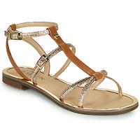 Chaussures Femme Comme Des Garcon JB Martin 1GRIOTTES Marron
