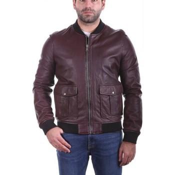 Vêtements Homme Vestes en cuir / synthétiques Ladc Nation Aubergine Aubergine