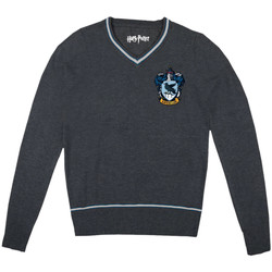 Vêtements Homme Pulls Harry Potter Pull-over  - RAVENCLAW CLASS Anthracite