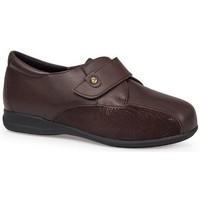 Chaussures Femme Derbies & Richelieu Calzamedi CHAUSSURES  DIABETIC 0708 BROWN