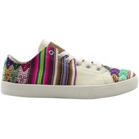 Chaussures Homme Baskets basses Wayna calmaccre Multicolore