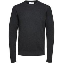 Vêtements Homme Vestes / Blazers Selected 16074692 Anthracite